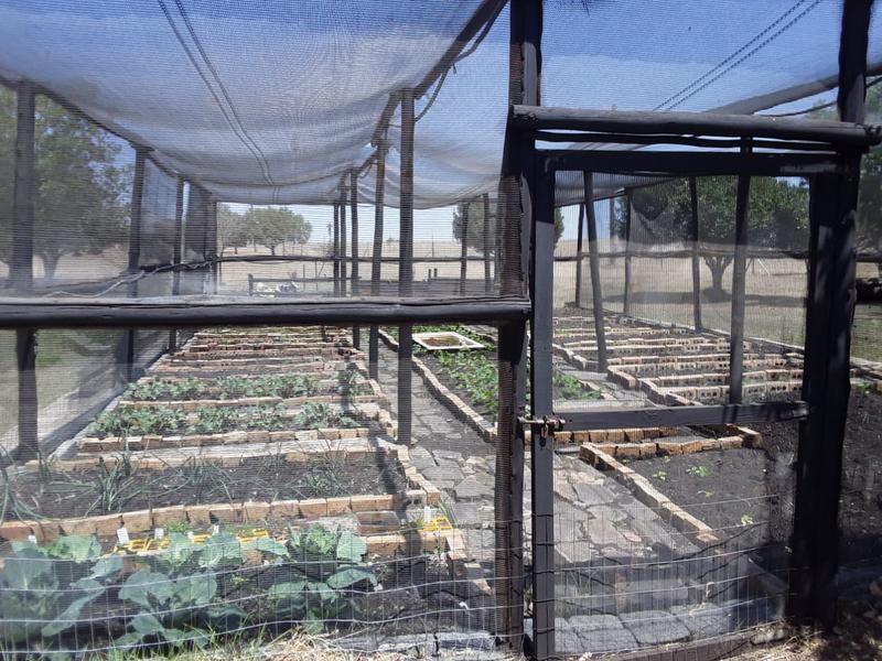 Property For Sale in Oranjeville, Oranjeville 14