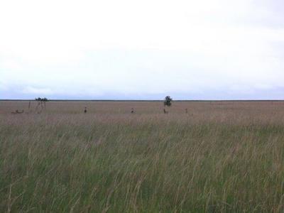 Farm For Sale in Oranjeville, Oranjeville